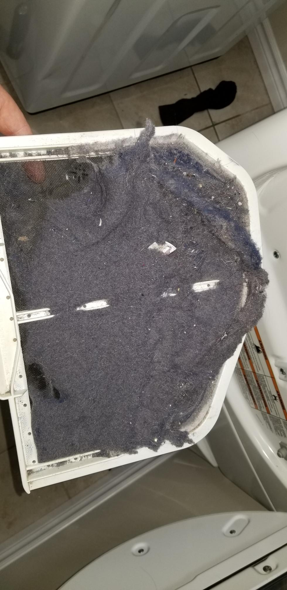 Dryer lint filter